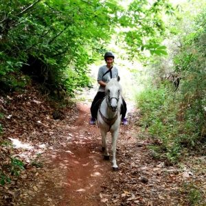 Ruta a caballo, una experiencia diferente en Tenerife